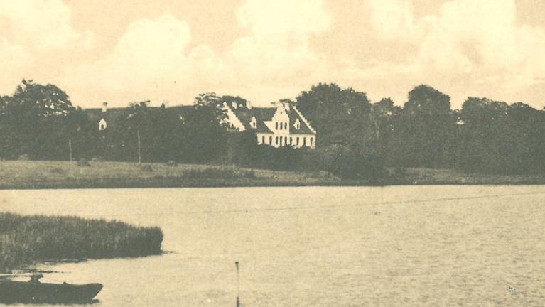 Bjørnemose ved Svendborg